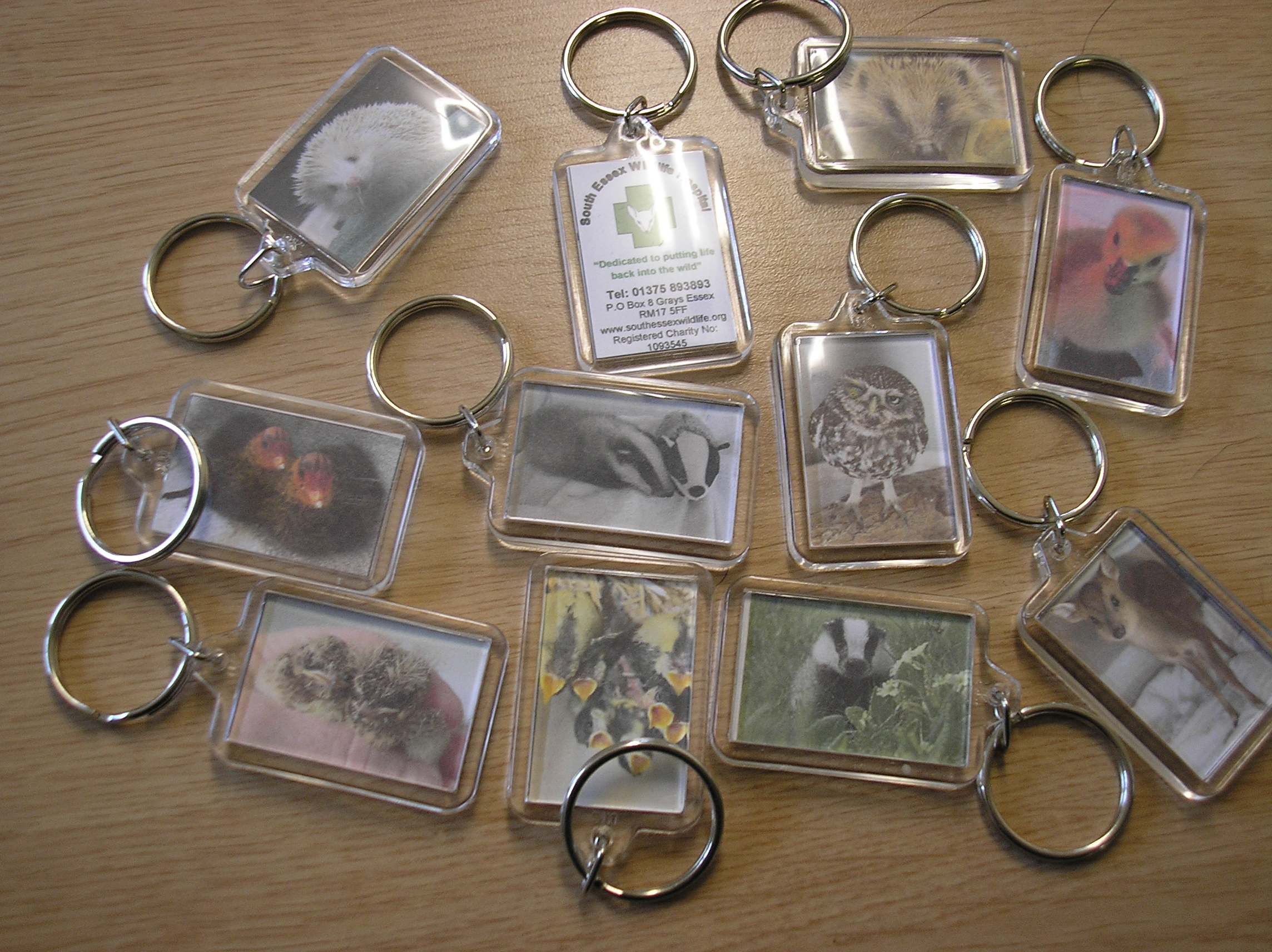 Buy a keyring to help support South Essex Wildlife Hospital