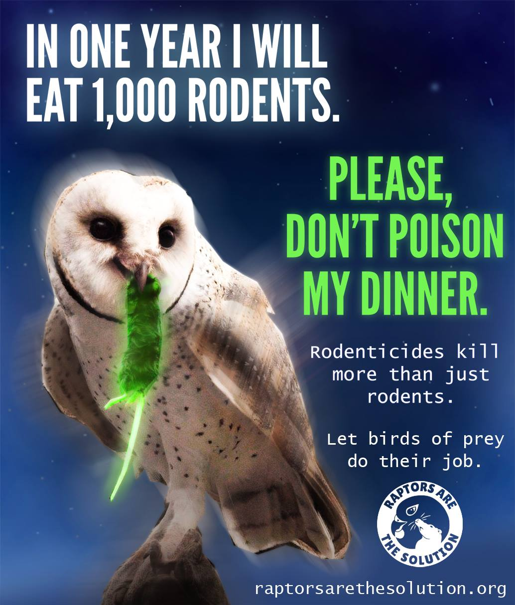 Don't poison my dinner